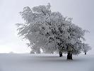 Winter by Richardfabi